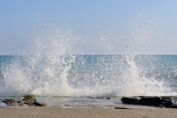 The waves breaking on a stony beach Stock photo © cherezoff