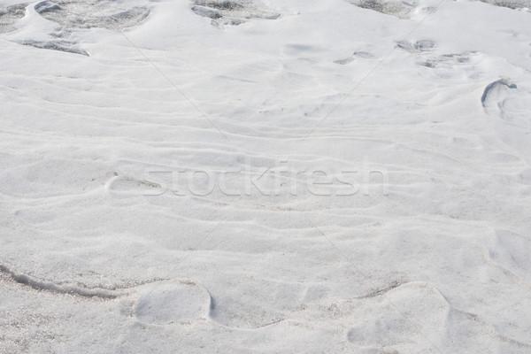 Background of seamless texture Stock photo © cherezoff