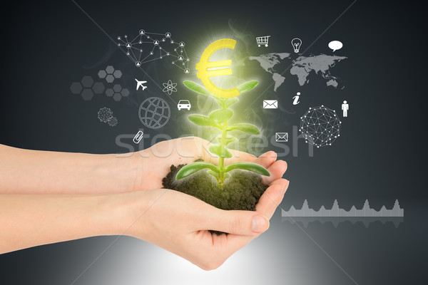 Womans hands holding plant with euro sign Stock photo © cherezoff