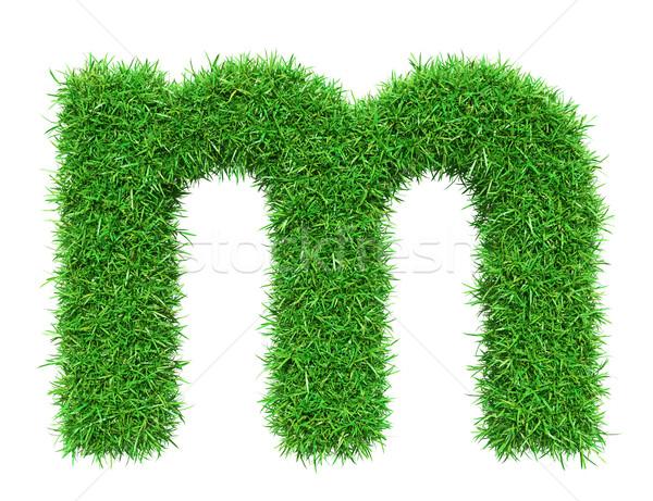 Green Grass Letter M Stock photo © cherezoff