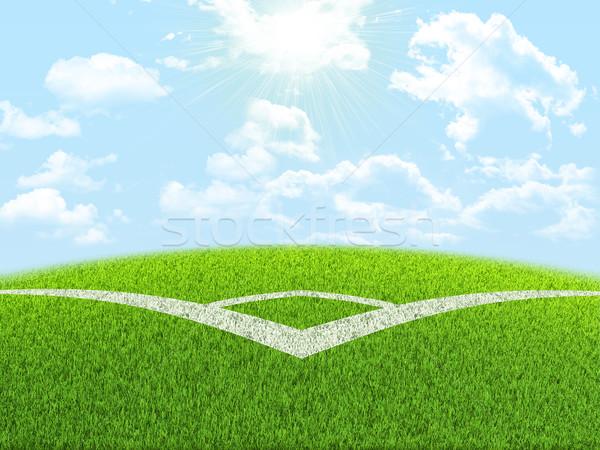 Angle of football field Stock photo © cherezoff