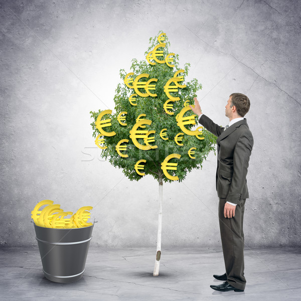 Zdjęcia stock: Biznesmen · euro · znaki · drzewo · wiadro