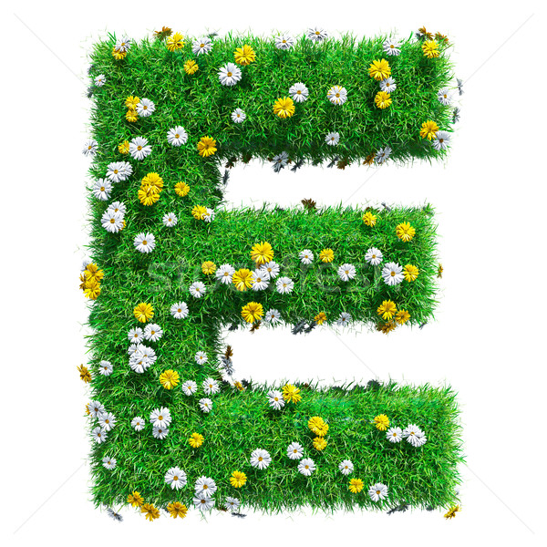 Letter E Of Green Grass And Flowers Stock photo © cherezoff