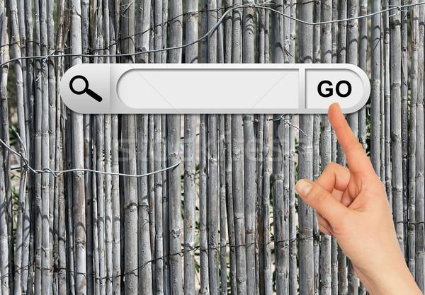 Mano humana búsqueda bar navegador edad gris Foto stock © cherezoff