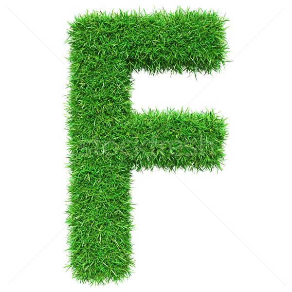 Green Grass Letter F Stock photo © cherezoff