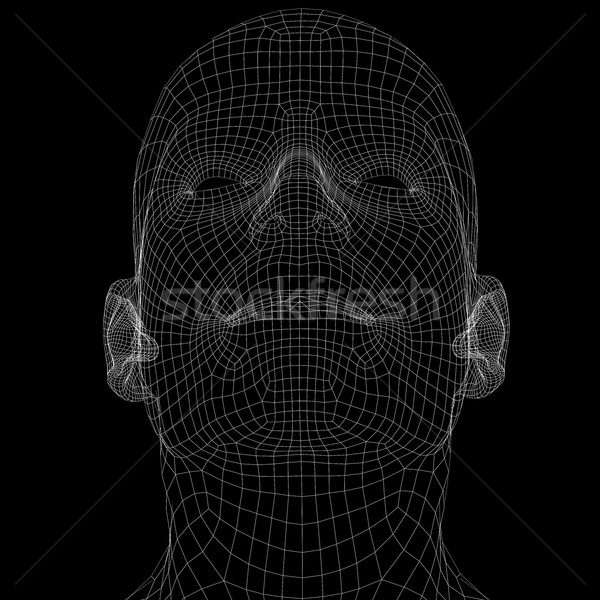 Human head. Wire frame render Stock photo © cherezoff