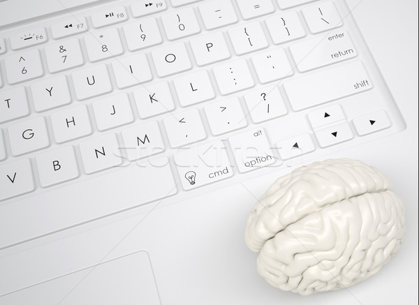 White brain on the keyboard Stock photo © cherezoff