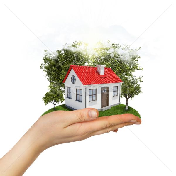 Stockfoto: Menselijke · hand · klein · huis · bomen · gras