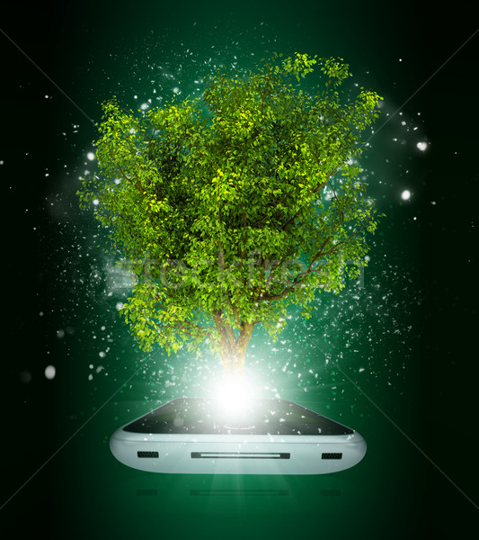 Smart phone with magical green tree and rays of light Stock photo © cherezoff