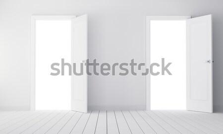 Due porte stanza vuota illustrazione 3d scelta costruzione Foto d'archivio © cherezoff