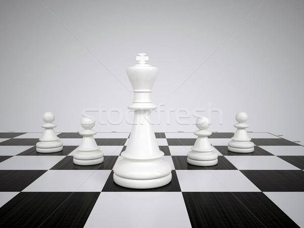 Blanco rey del ajedrez caballo ajedrez negro rey Foto stock © cherezoff