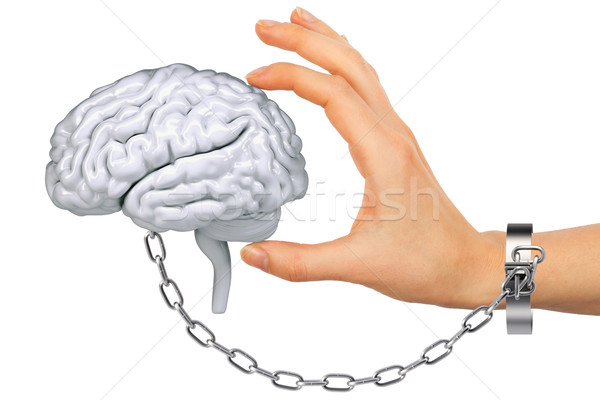 Chained hand holding human brain Stock photo © cherezoff