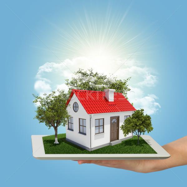 Menselijke hand klein huis bomen Stockfoto © cherezoff