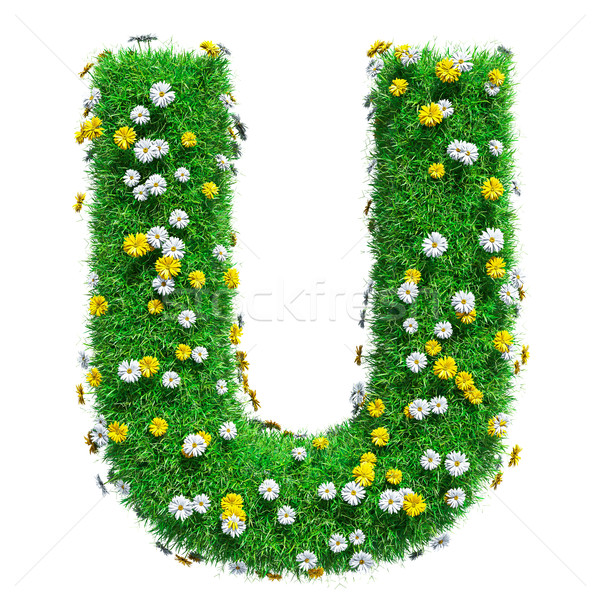 Letter U Of Green Grass And Flowers Stock photo © cherezoff