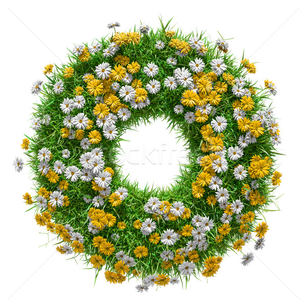 Nature frame of green grass and flowers Stock photo © cherezoff