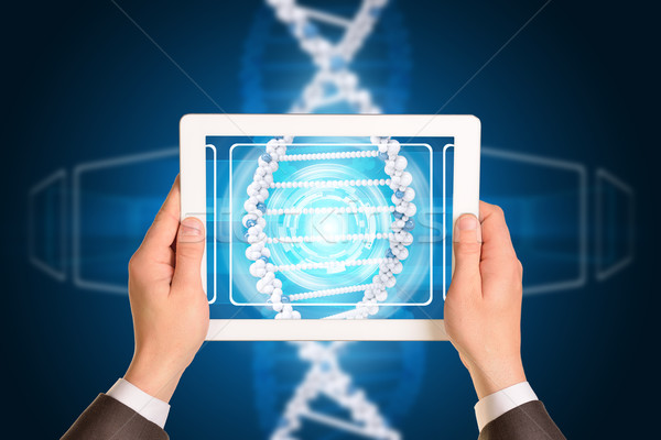 Man hands using tablet pc. Image of DNA helix on screen Stock photo © cherezoff