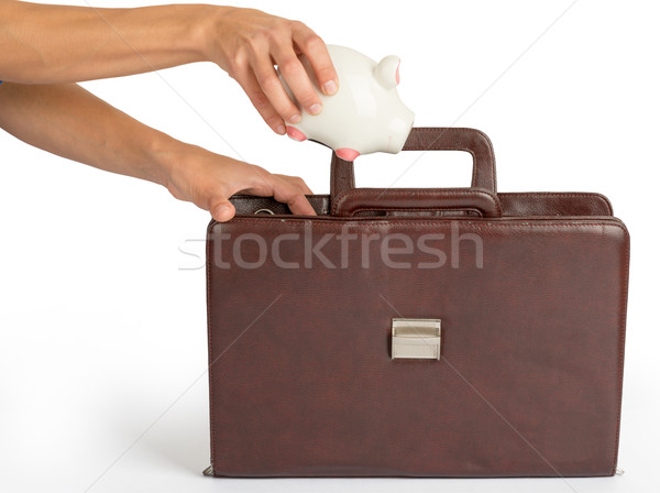 Humans hand holding piggy bank and suitcase Stock photo © cherezoff