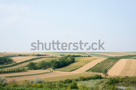 Hills with wind power station  Stock photo © cherezoff