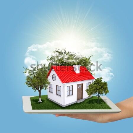Casa blanca rojo techo chimenea verde herboso Foto stock © cherezoff