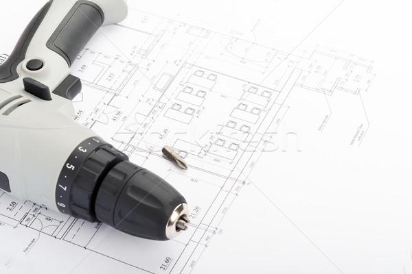 Grey screwer on draft Stock photo © cherezoff