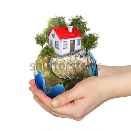 Earth, small house, green grass and trees Stock photo © cherezoff