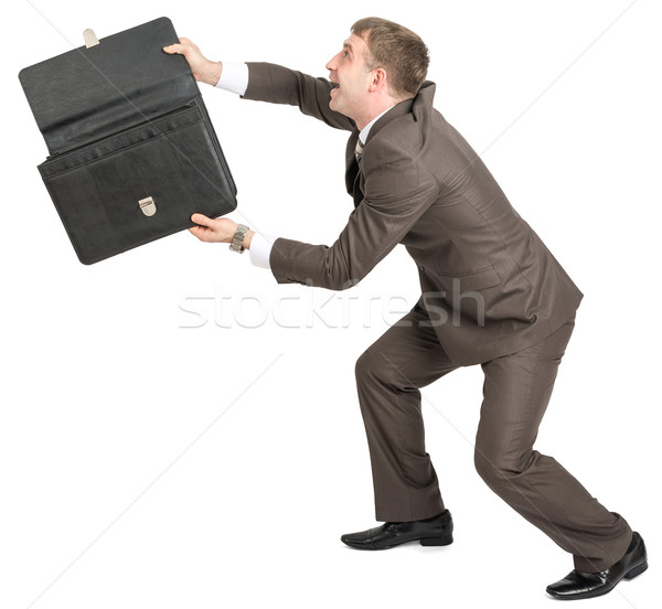Happy businessman with open briefcase Stock photo © cherezoff