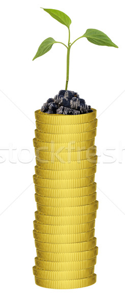 Plant on gold coins stack Stock photo © cherezoff
