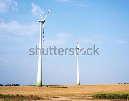 Wind farms on field Stock photo © cherezoff