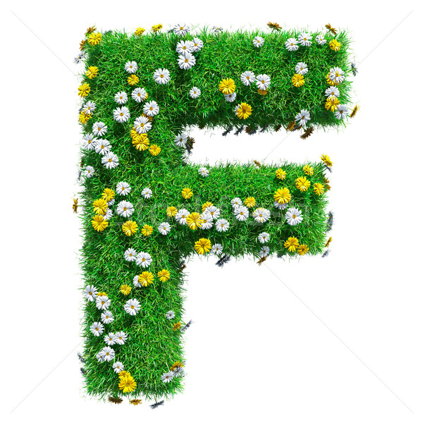 Letter F Of Green Grass And Flowers Stock photo © cherezoff