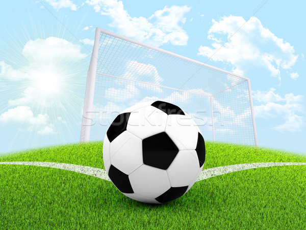 Soccer ball in the corner of field Stock photo © cherezoff