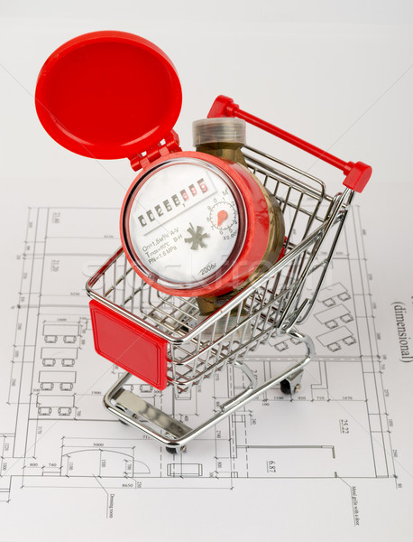 Red water meter in shopping cart Stock photo © cherezoff