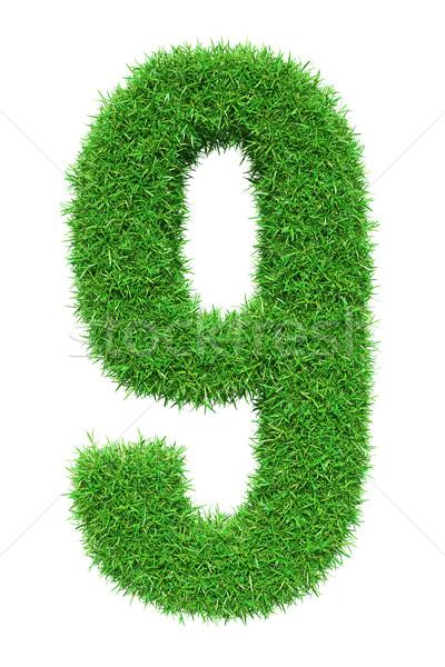 Green grass number 9 Stock photo © cherezoff