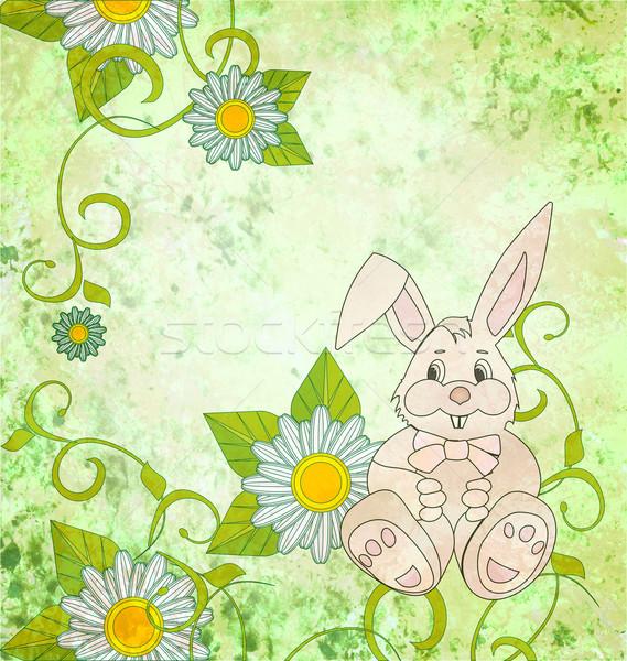 Cartoon konijn madeliefjes groene grunge bloem Stockfoto © cherju