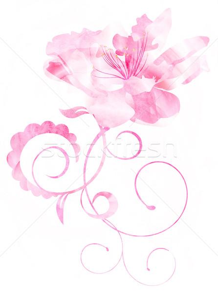 Rózsaszín vízfesték virág hajlatok illusztráció izolált Stock fotó © cherju