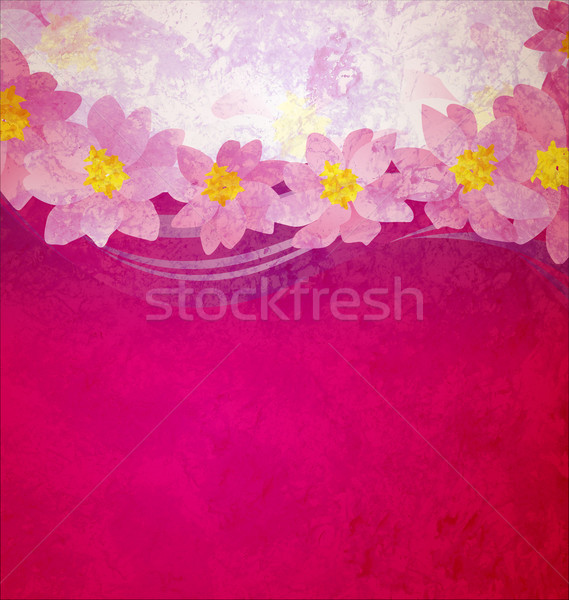 colorful grunge pink magenta and violet background with fantasy  Stock photo © cherju