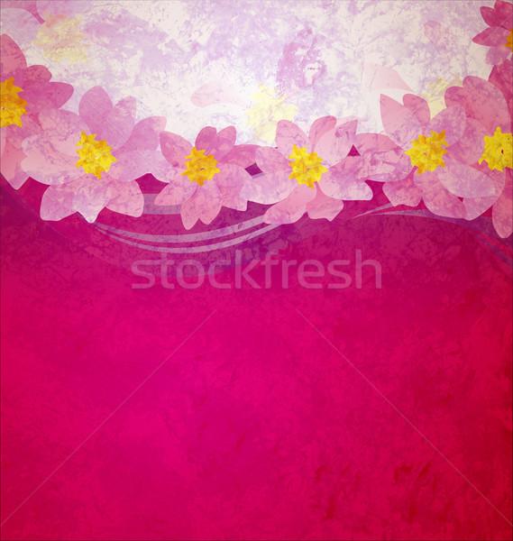 Coloré grunge rose magenta violette Fantasy Photo stock © cherju