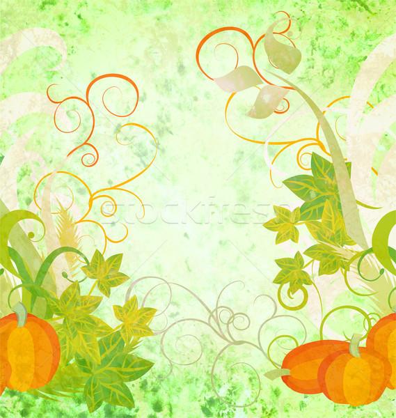 ősz mintázott narancs sütőtök textúra absztrakt Stock fotó © cherju
