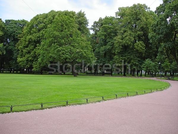 зеленый парка лет Россия дерево природы Сток-фото © cherju