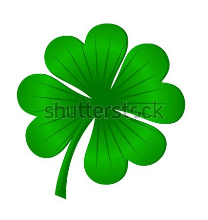 4 leaves luck clover green isolated on white vector Stock photo © cherju