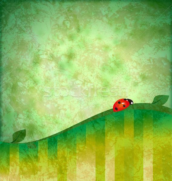Zöld grunge illusztráció piros katicabogár virág Stock fotó © cherju