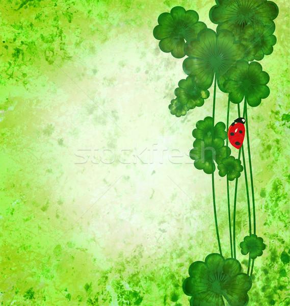 Klaver lieveheersbeestje groene grunge textuur dag grens Stockfoto © cherju