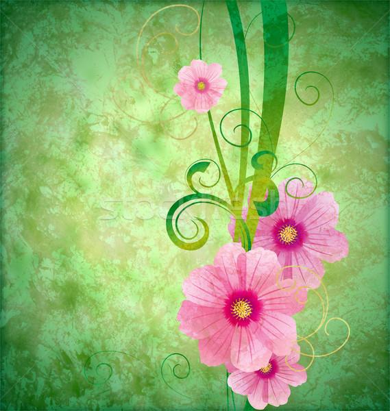 Grunge vintage estilo rosa flores de primavera verde Foto stock © cherju