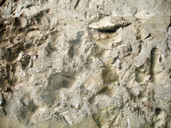 Oude stenen muur textuur muur abstract ontwerp Stockfoto © cherju