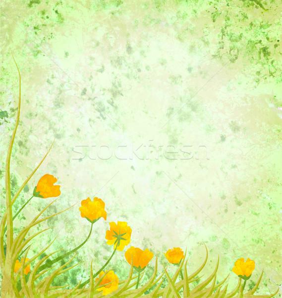 Világoszöld illusztráció sárga virágok húsvét tavasz fű Stock fotó © cherju
