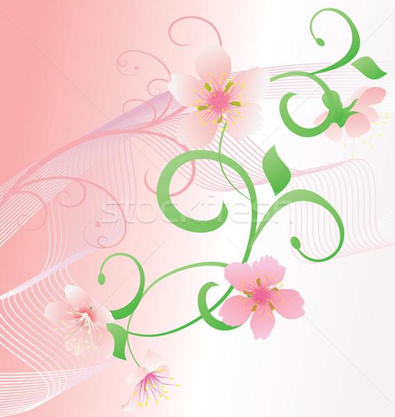 Rosa romance vector flores curvas flor Foto stock © cherju