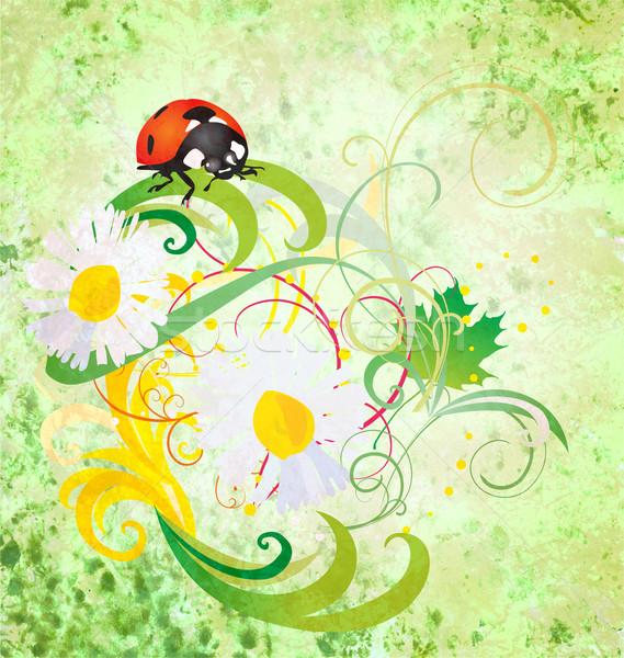 Grunge illusztráció katicabogár százszorszép virágok zöld Stock fotó © cherju