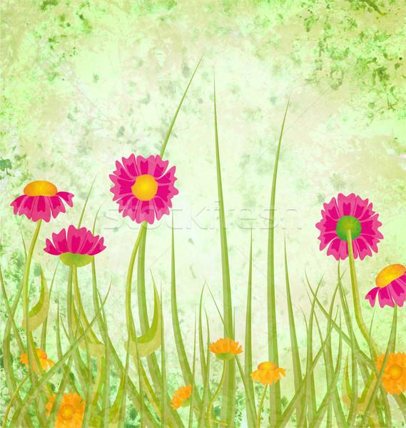Red flowers  meadow grunge green background Stock photo © cherju