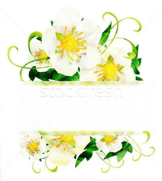 Stock fotó: Vízfesték · fehér · vad · rózsák · virágok · keret