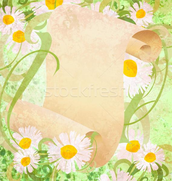 Stockfoto: Daisy · bloemen · groen · gras · oud · papier · scroll · illustratie