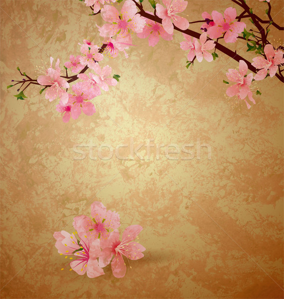 spring blossom cherry tree and pink flowers on brown old paper g Stock photo © cherju